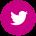 tweetter-icon